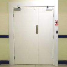 Janus cleanroom door